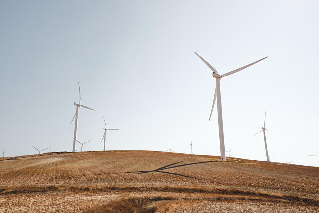Wind turbines stand on top of a just-mown hill of dry grass.